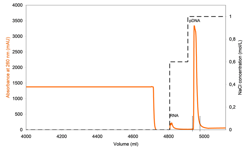 Preparative chromatogram of capture step on CIMmultus™ DEAE 8 mL